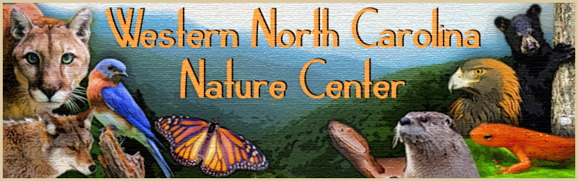 Western North Carolina Nature Center Membership